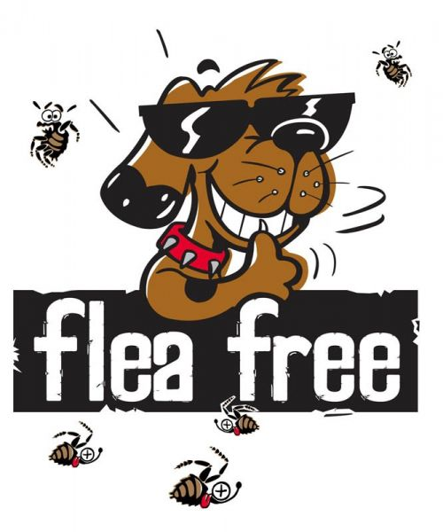 Fonzo Flea Free Dog Modernised